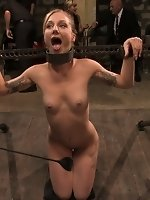 Local amateur tries BDSM for the first time ever and is rewarded...