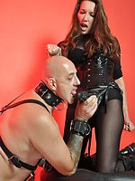 Bald puppy disciplined by strapon domina Jane