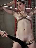 Totally naked beauty, bound in ropes is whipped with passion